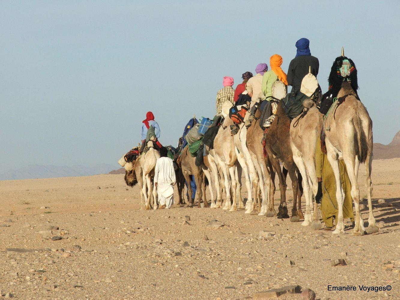 Trek rando sahara desrt algerie
