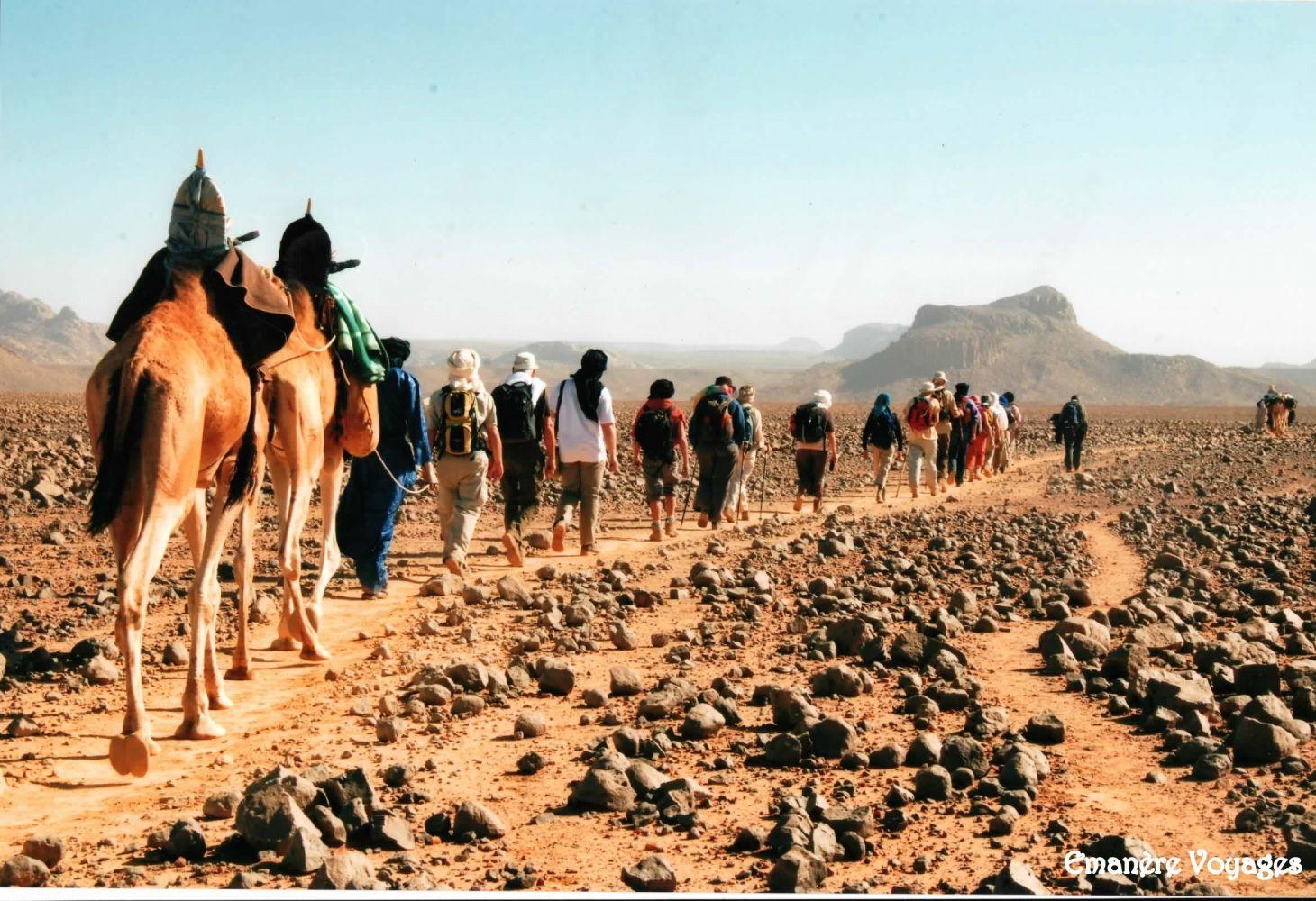 Caravane_Assekrem_Hoggar_Sahara_desert_Algerie.jpg
