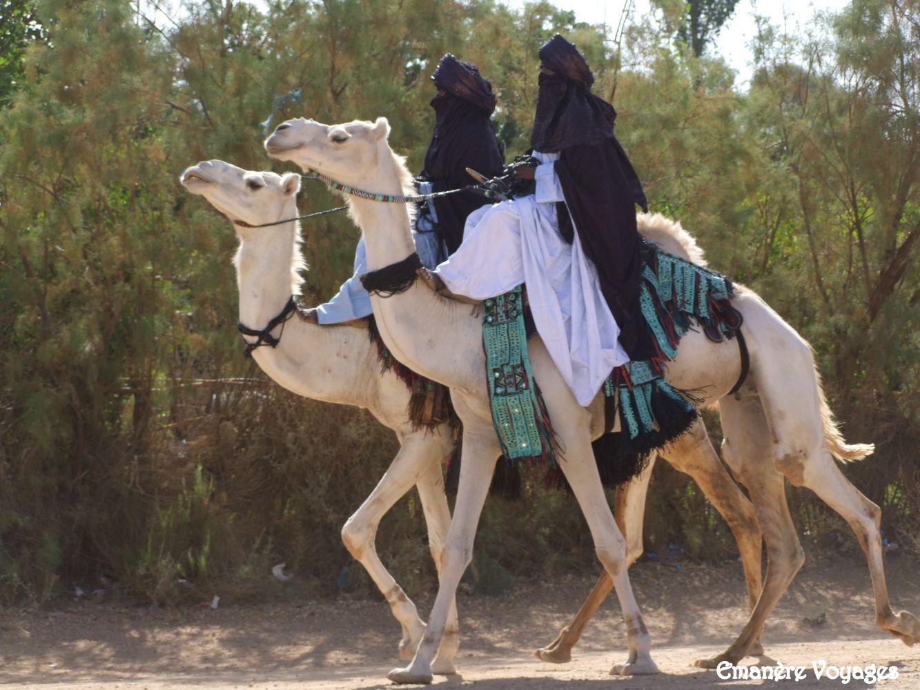 Tazrouk_Sahara_desert_Algerie.JPG